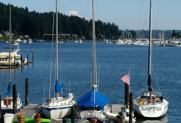 Reviews articles about Giv Harbor, Washington - image